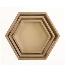 Bandejas hexagonales - 14002037